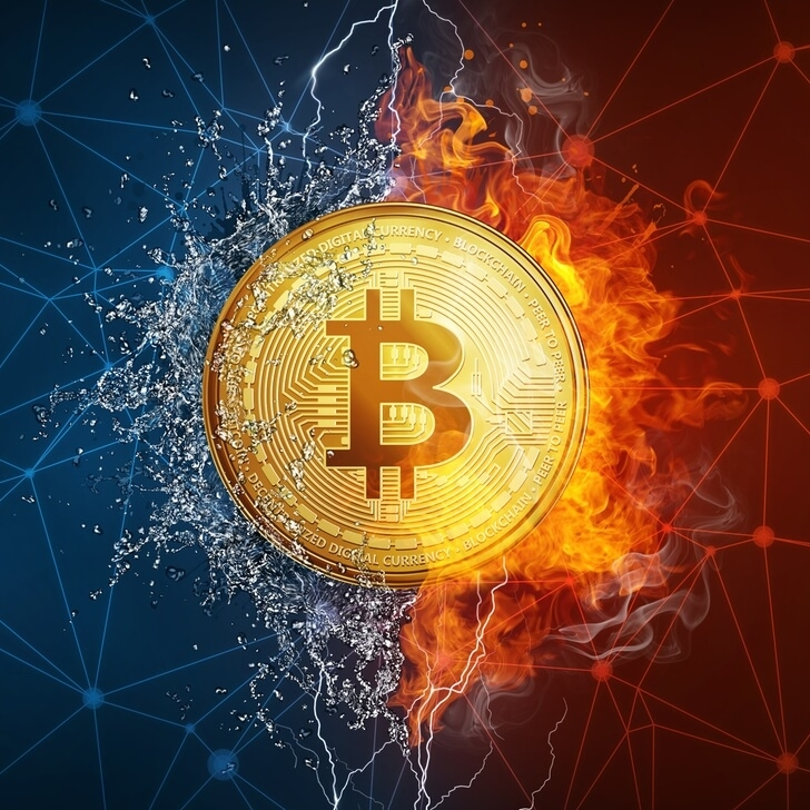 Cryptocurrency Burning: Is Control Over Digital Inflation Possible?