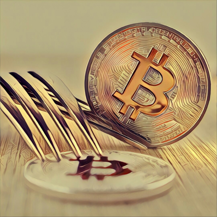 What Are Crypto Forks and How Cash In on Them?