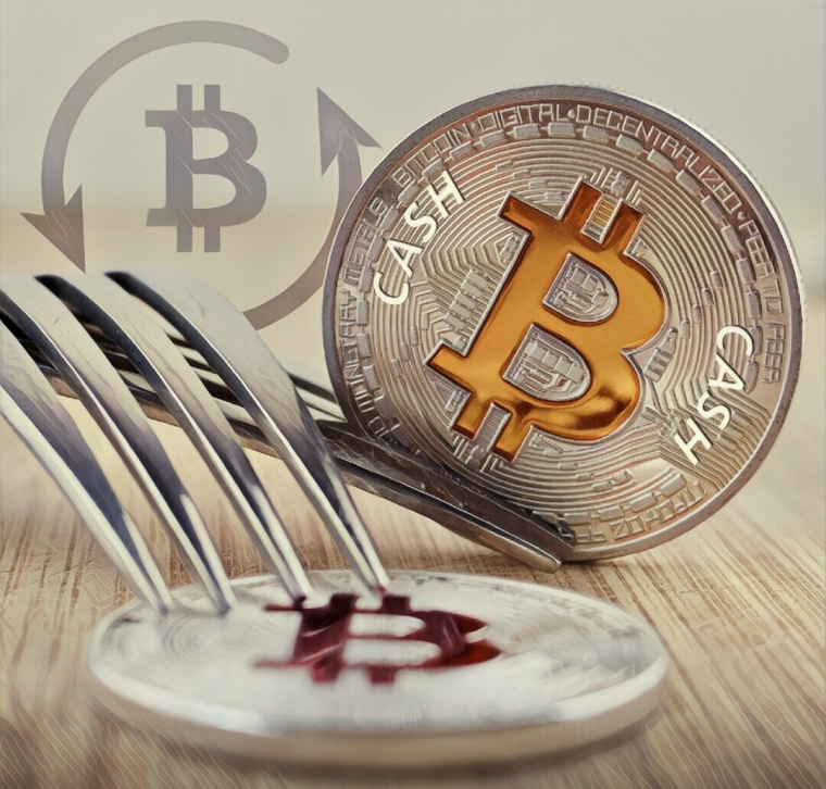 What Are Crypto Forks and What They Are Used For?